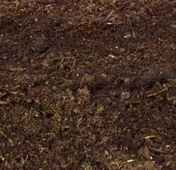 estiercol-ternero-abono-organico